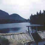 Unknown dam on Big East River system, Muskoka, Ontario,1949.