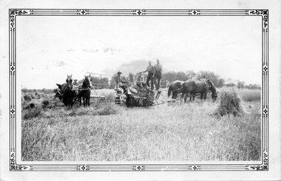 Travaux agricole