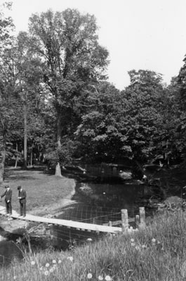 The Swinging Bridge crossing the Sixteen Mile Creek at Milton.