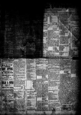 McHenry Plaindealer (McHenry, IL), 7 Jan 1885