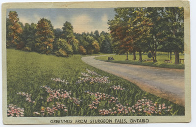 Carte postale de souhaits / Greeting Postcard