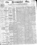 Newmarket Era (Newmarket, ON)15 Nov 1878