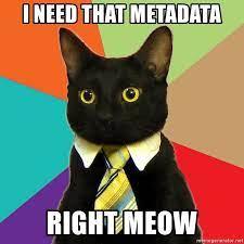 Business Cat Needs Metadata