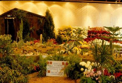 Annual Fall Flower Show
