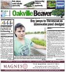 Oakville Beaver1 Aug 2014