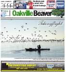 Oakville Beaver21 Aug 2014