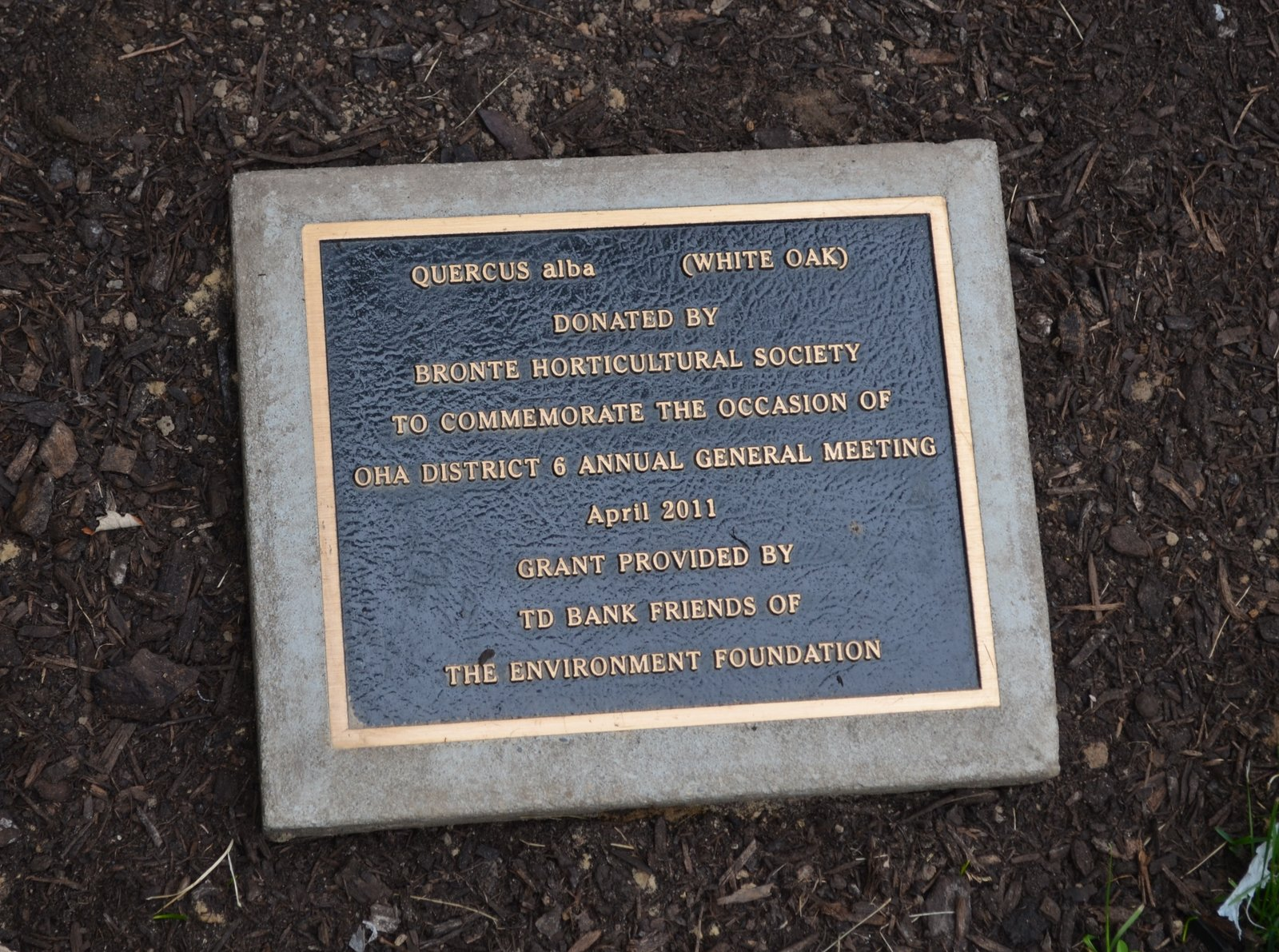 Bronte Horticultural Society plaque at Sovereign House commemorating OHA District 6