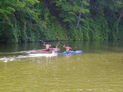 Paddlers on 16 Mile Creek