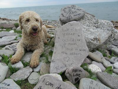 Written Messages on Rocks by the Lake