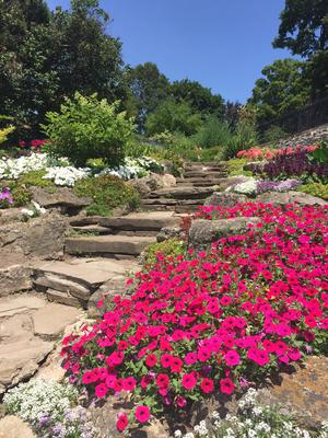 Erchless House Gardens