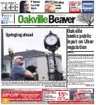Oakville Beaver11 Mar 2016