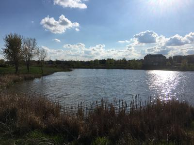 Views in Oakville