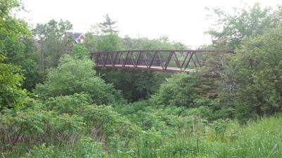 Footbridge on Nipegon Trail