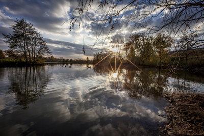 Evening Pond