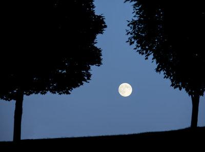 Moon Glow