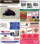 Oakville beaver