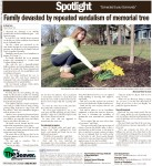 Family devastated by repeated vandalism of memorial tree