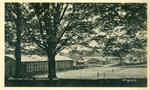 Oakville Club Postcard