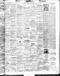 Ottawa Times (1865), 17 Oct 1873