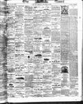 Ottawa Times (1865), 20 Oct 1873