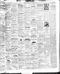 Ottawa Times (1865), 24 Oct 1873