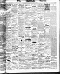 Ottawa Times (1865), 25 Oct 1873