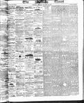 Ottawa Times (1865), 28 Oct 1873