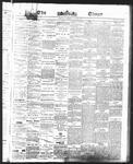 Ottawa Times (1865), 25 May 1875