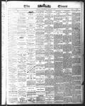 Ottawa Times (1865), 3 Jan 1877