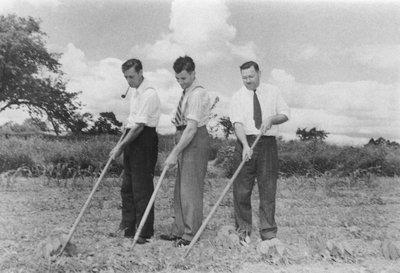 Volunteer labourers
