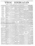 York Herald, 22 Nov 1877