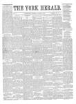 York Herald, 31 Jan 1889