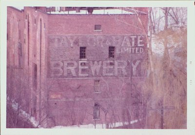 Taylor & Bate Brewery Ltd.