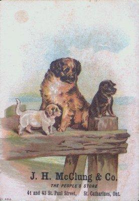 J.H. McClung & Co. Advertising Postcard
