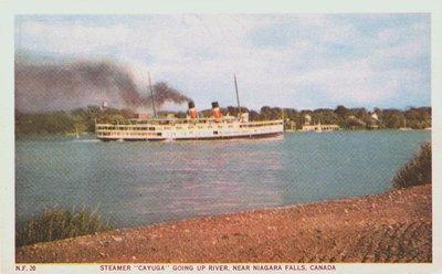 "The Steamer ""Cayuga"""
