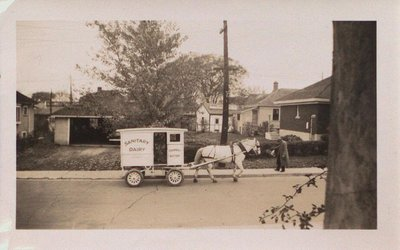 Sanitary Dairy Horse and Cart