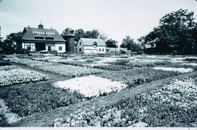 Stokes Seeds Test Gardens