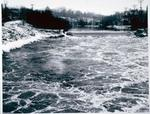 Welland Vale Rapids on the 12 Mile Creek