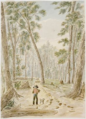 Forest Near Old Sly's, Rideau, Smiths Falls by James Pattison Cockburn (1779-1847), ca.1830