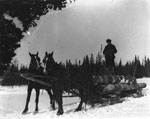 Logging Sleigh in the Woods, circa 1890