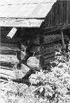 Log Home Corner, South River Area