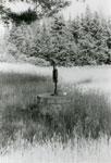 Water Pump, South River Area, circa 1950