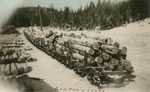 Log Train Ready to be Moved, circa 1920