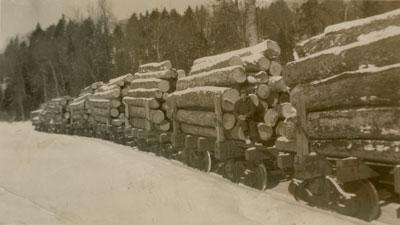 Standard Chemical Company Lumber Camp, 1939