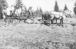 Building Eagle Lake Road, Men on a Horse Drawn Cart, circa 1910