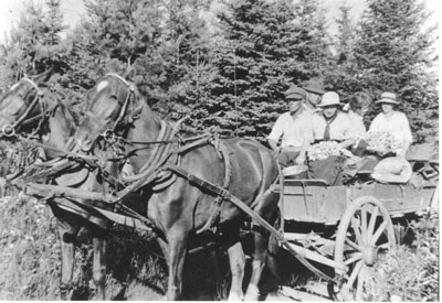 Mr. & Mrs. Ray Hill with Mrs. Willard Lang & Mrs. George Kemp on a Horse Drawn Cart, circa 1920