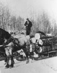 Walter Frost on Log Sled, 1944