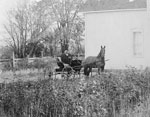 Tom Wigg in Horsedrawn Carriage, circa 1920