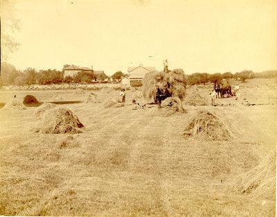 Ketcheson Farming