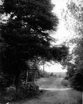 Lovers' Lane first bridge, ca.1890's.  Cavendish, P.E.I.  (74 of vol.1 diaries)